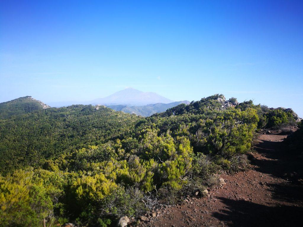 Renginiai Tenerifėje, Žygiai, Teno kalnai, lietuviu bendruomenė Tenerifėje