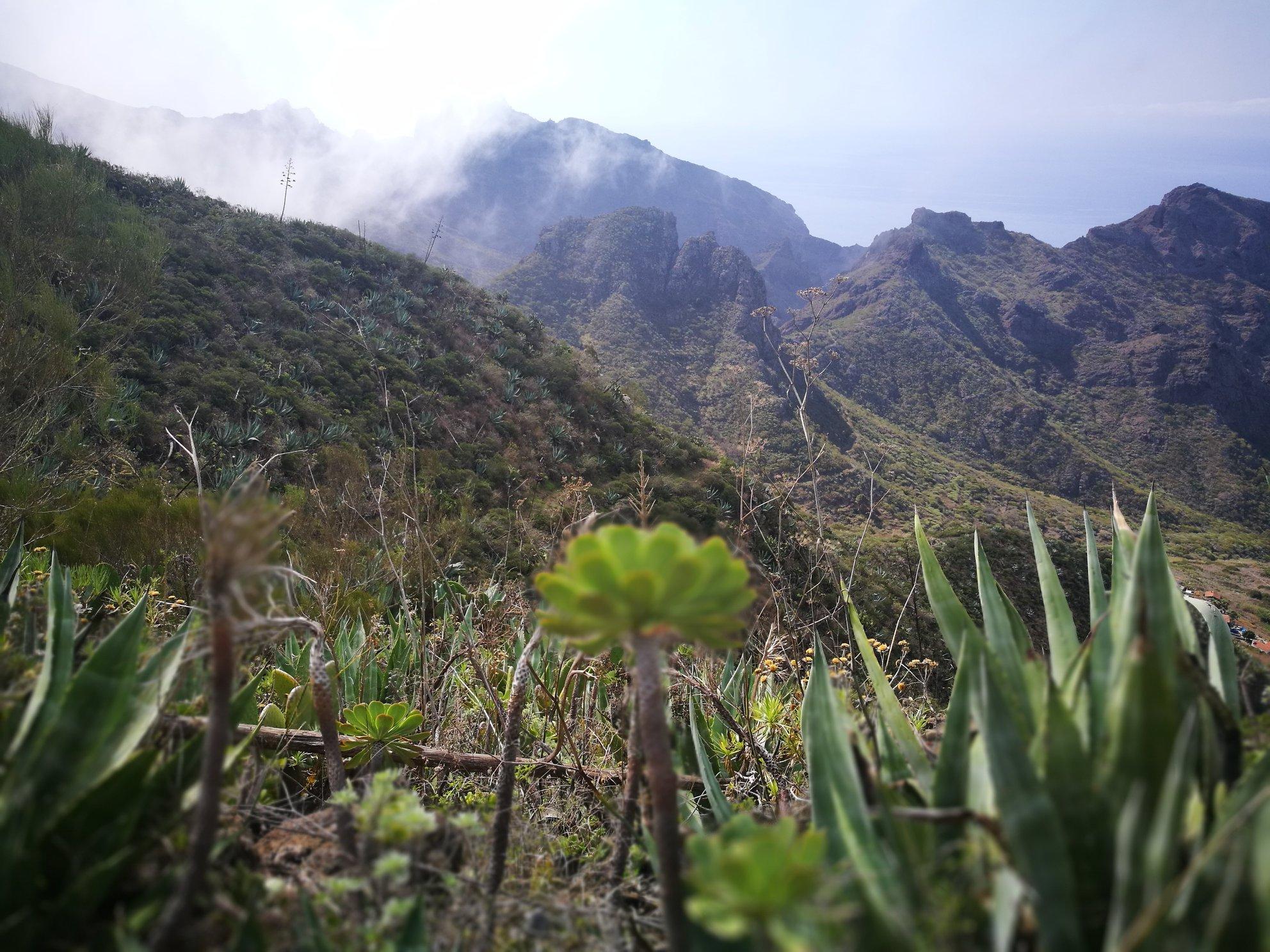 Žygiai, renginiai tenerifeja, Lankytinos vietos, lietuviu bendruomene Tenerifeje