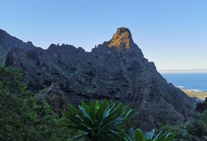 zygis los Silos renginiai Atostogos Tenerifeje lietuviu bendruomene (10)ą